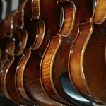 Violins in a Music Store